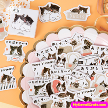 Tuxedo Cats Decal