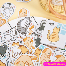 Cats and Dogs Stickers