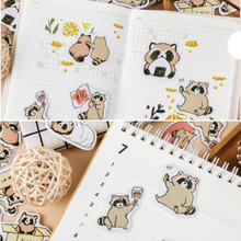 45 Pc Pack The Life of a Fuzzy Raccoon Bandit Stickers