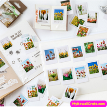Tulip Garden Decorative Stickers