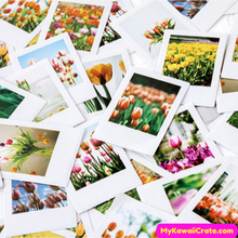 Beautiful Flowers Stickers