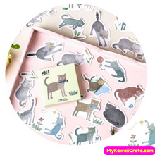 45 Pc Pk A Surprised Looking Cat Decorative Stickers