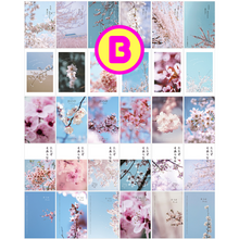 Kawaii Designs Postcards ~ Sakura Cherry Blossom Postcards, Cute Dog Cat Animals Postcards