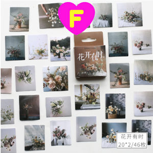 Life Style Series Decorative Stickers