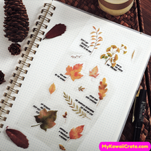 Autum Leaves Stickers