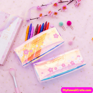 Translucent Pencil Bag