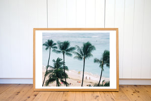 HAWAII AERIAL PALMS FILM PRINT - Ivy And The Fox