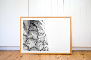 PINEAPPLE LOVE BLACK & WHITE PHOTO PRINT - Ivy And The Fox