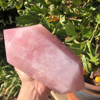 Rose Quartz Jumbo Double Terminated Point - 8""