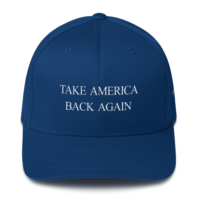 TAKE AMERICA BACK AGAIN Structured Twill Cap