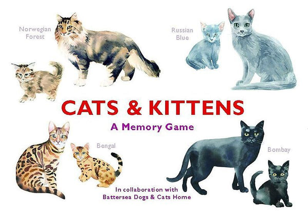CATS AND KITTENS MEMORY GAME