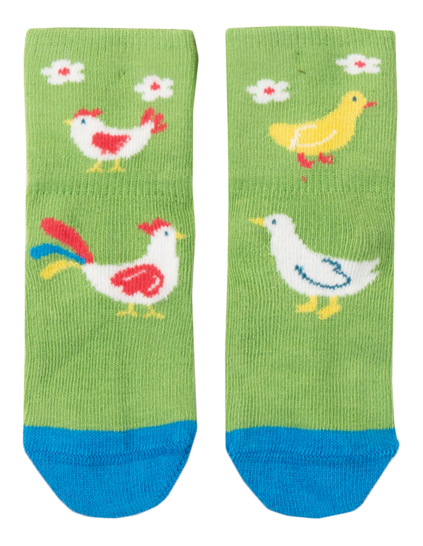 Perfect Little Pair Socks, Kiwi Chicken