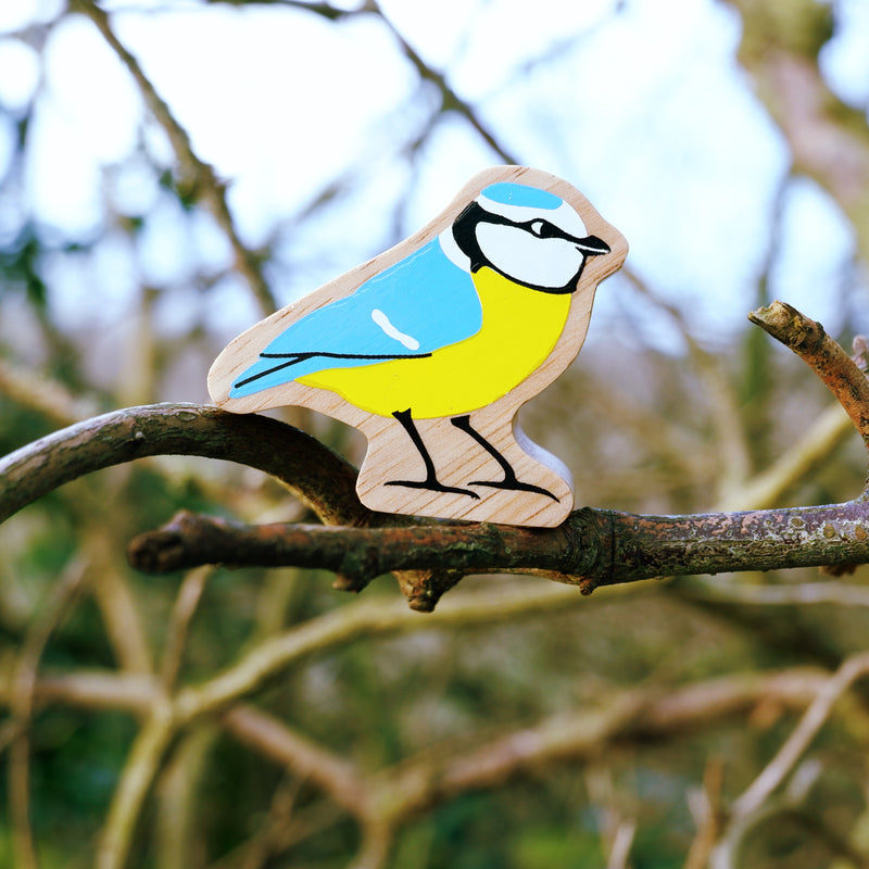 New In!! Natural yellow and blue tit