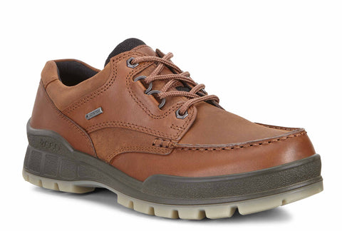Ecco Track 25 GTX Mens Waterproof Lace Up Walking Shoe 831714-52600 Bison ON 52600