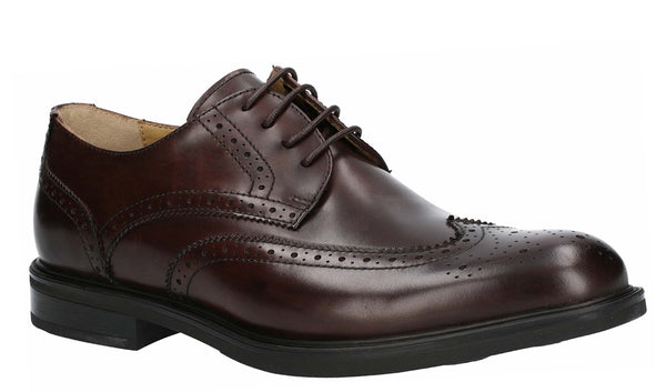 Steptronic Granada Derby Brogue Brown