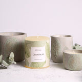 St. Eval Geranium, Eden Large Pot - Fly Jesse- Unique, special and quality gifts