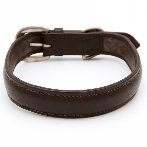 Plain Brown Padded Dog Collar
