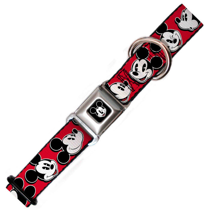 Micky Mouse Dog Collar