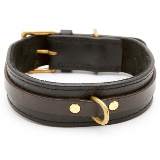 Black Dog collar with Brown Contrast Strap