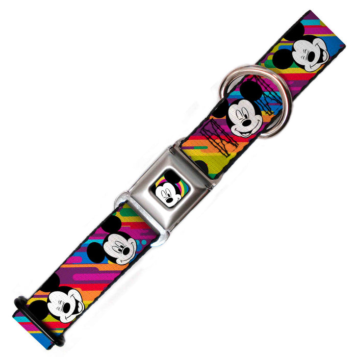 Micky Mouse Dog Collar, Rainbow