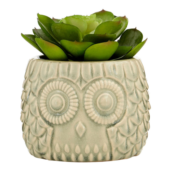 Large Succulent Grey Ceramic Owl Pot Fiori