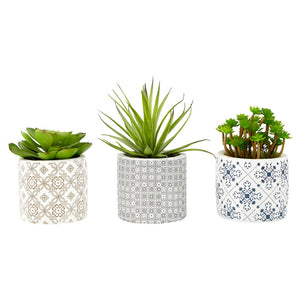 Set of 3 Succulents Henna Ceramic Pots Fiori