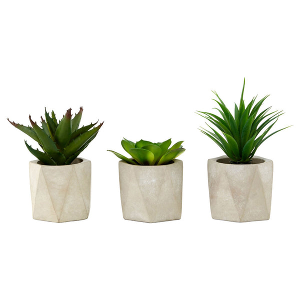 Set of 3 Succulents Geo Cement Pots Fiori