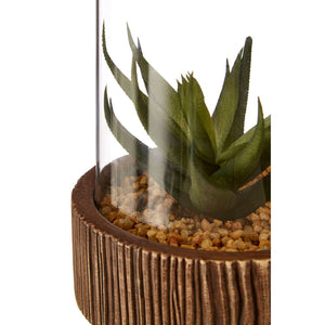 Large Succulent Natural Stone Base Fiori