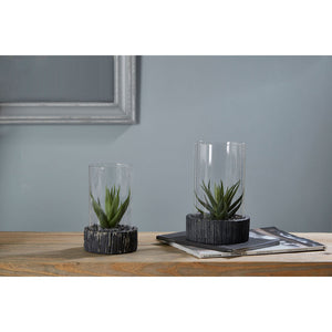 Large Succulent Black Stone Base Fiori