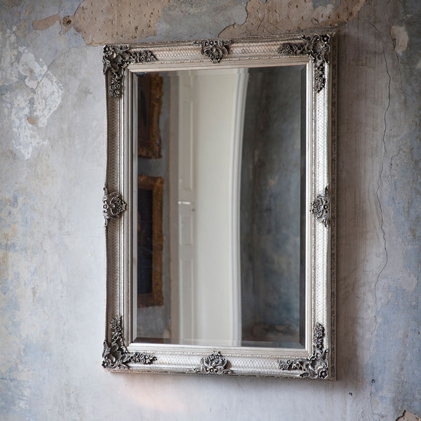 Silver Ornate Rectangle Mirror hung on a wall