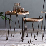 Nelson Set of 2 Side Tables