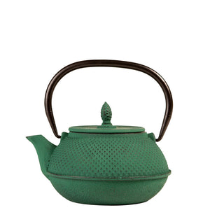 Stylish iron Japanese teapot side view in dark green