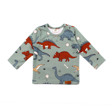 Walkiddy Shirt LS Funny Dinosaur,little-tiger-togs.