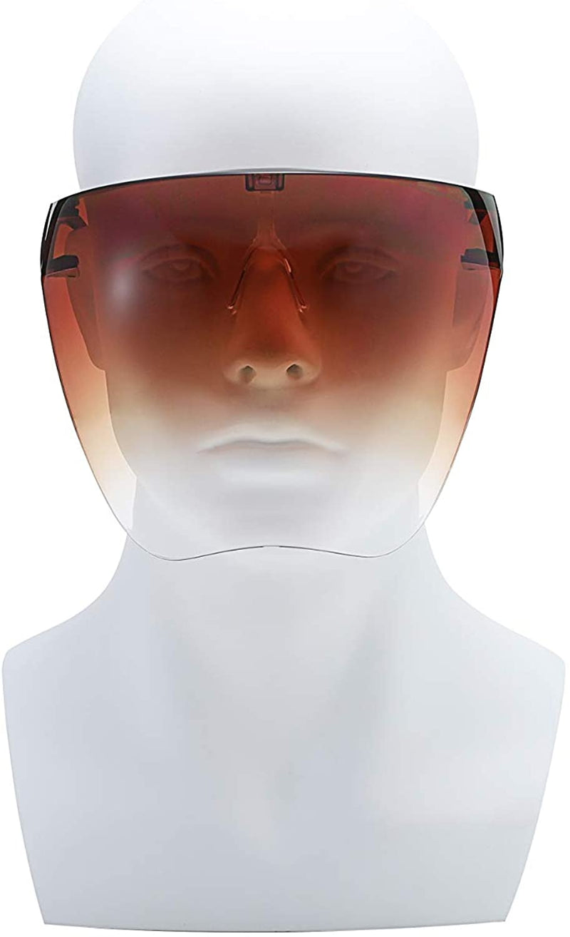 Goggle Face Shield Mask