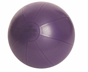 55cm Pro Swiss Ball (500Kg) with Pump