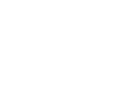 Zinco by Elemental Essentials