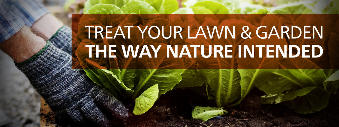 Natural Lawn and Garden Products for Healthy Plants