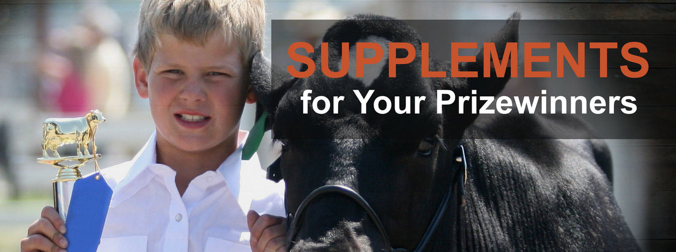Show Animal Supplements