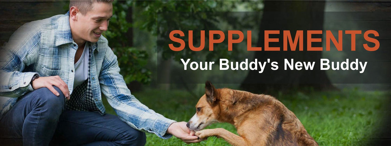 Pet Supplements and Nutrition Technologies