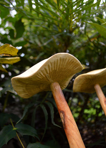 Wooden Mushroom Decoration