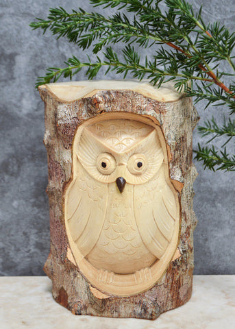 Owl in Log