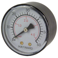 Hayward EasyClear Filter Parts