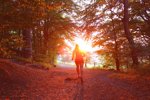 Running During Autumn At Sunset