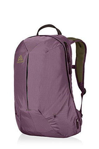 9fa1ab26607b Gregory Mountain Products Sketch 22 Liter Daypack, Zin Purple, One Size