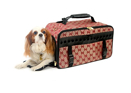 Bark-n-Bag Anniversary Skybag Collection Pet Carrier, Large