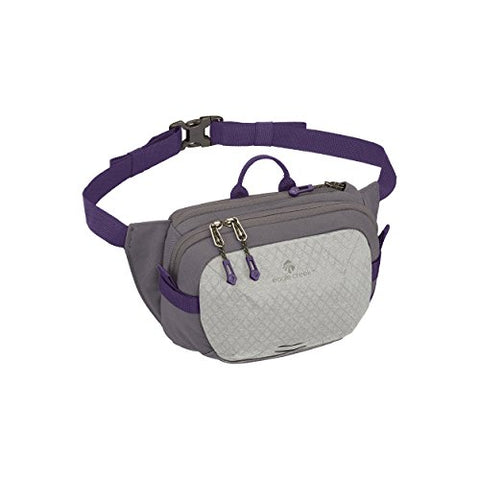 Eagle Creek Wayfinder Waist Pack Multiuse Fanny Pack for Travel Sport Waist Pack for E-reader & Phone Passport Wallet, Graphite/Amethyst