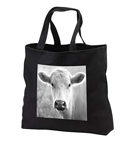 Stamp City - animal - Black and white photograph of a curious Charolais Cow in a field. - Tote Bags