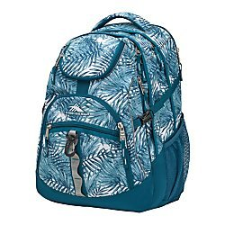High Sierra(R) Access Backpack With 17In. Laptop Pocket, Lagoon/Palms