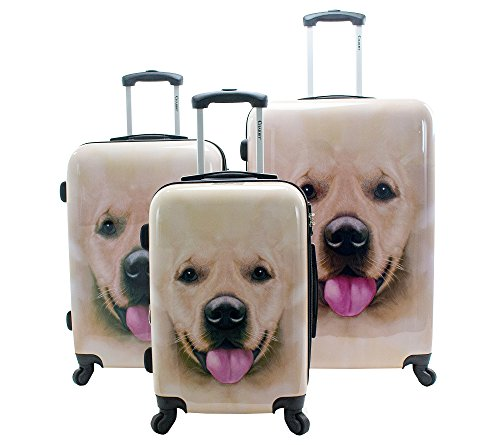 Chariot Labrador 3-Piece Luggage Set