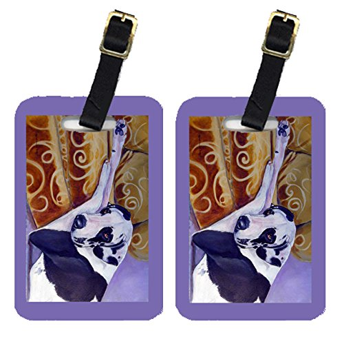 Caroline's Treasures 7162BT Pair of 2 Harlequin Natural Great Dane Luggage Tags, Large, multicolor